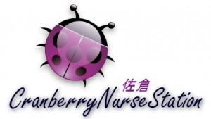 クランベリー訪問看護ステーション・佐倉の仕事イメージ
